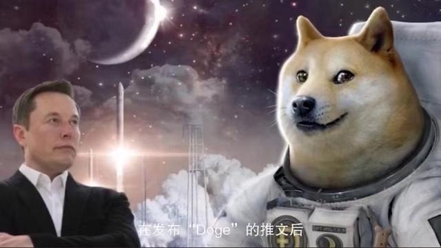 狗狗币3.jpg