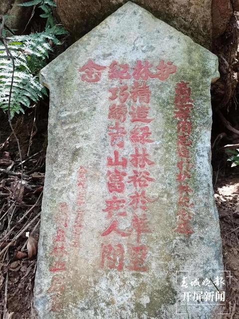 一家三代持续70年倾心守护高黎贡山 (7).jpg