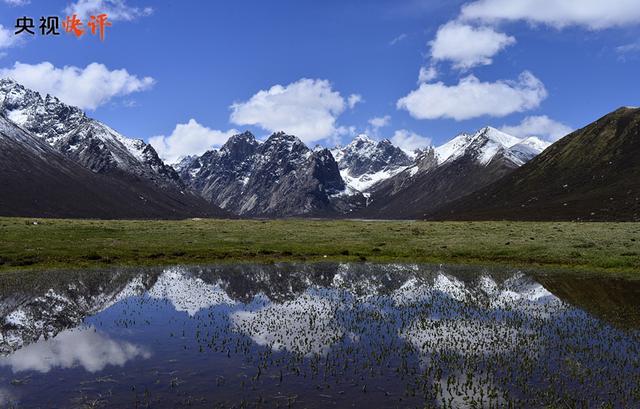 """【央视快评】牢记""""国之大者"""",在推进青藏高原生态保护和高质量发展上取得新成就"""