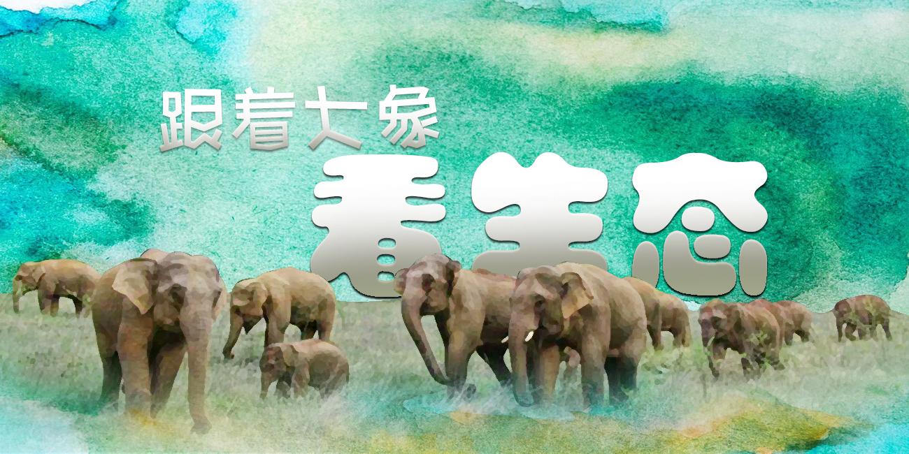 跟着大象看生态