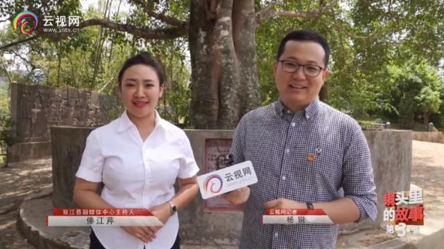 """""""云岭红色地标巡礼""""直播走进临沧2.png"""