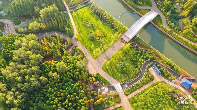 发布会 _ 17.6公里湖滨生态廊道将于6月底建设完成.jpg