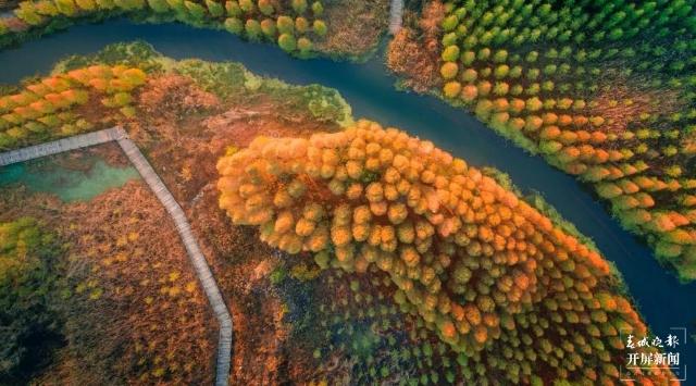 滇池(杨质高 摄)