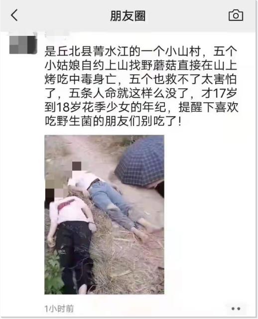 云南丘北5个女孩烤吃野蘑菇中毒身亡.png