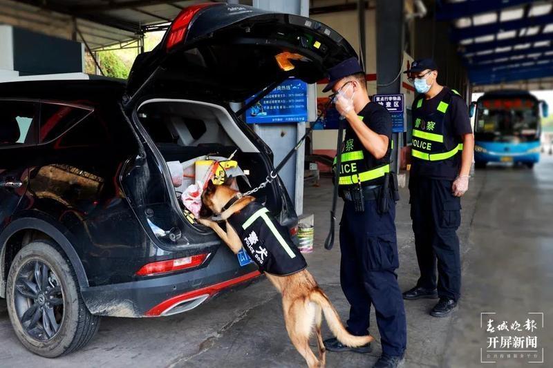"""犬亦有情,""""鹰""""击长""""空""""!芒颜边境检查站一条警犬的故事2.jpg"""