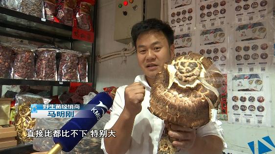 2.6斤松茸.png