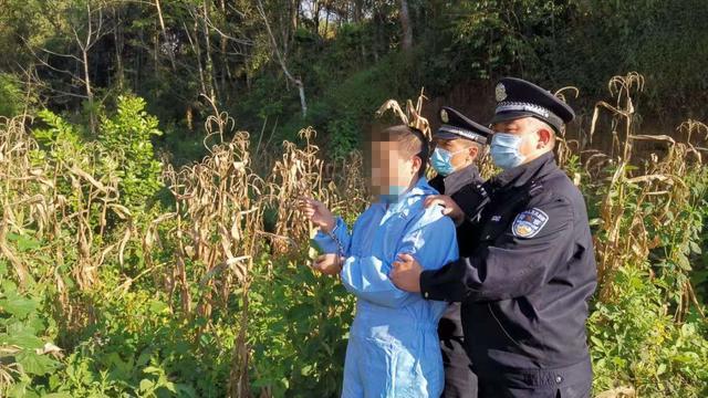 严打妨害国(边)境管理刑事犯罪!上半年立案8419起,抓获逾2.1万嫌疑人