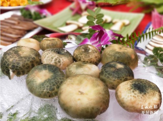 又是一年吃菌季!昆明周边买菌、吃菌指南请查收1.png
