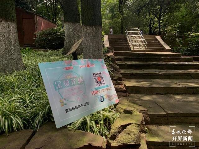 5大公园开通拍花参赛通道1.jpg