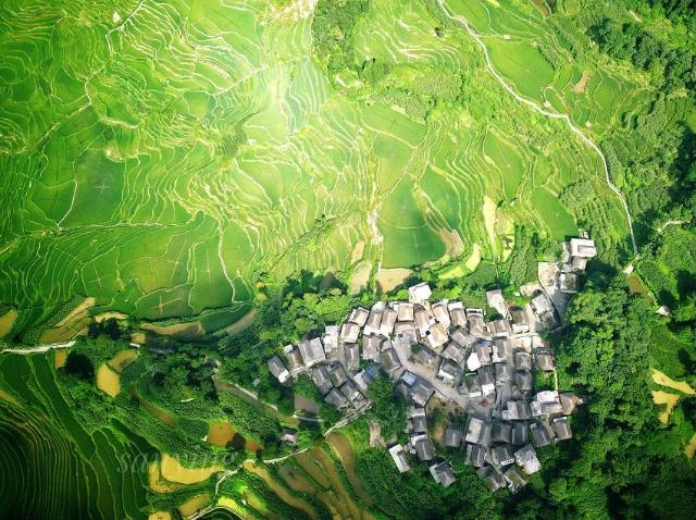 图五 云南元阳哈尼族梯田生态系统。元阳县(11445892)-20210915164810.jpg