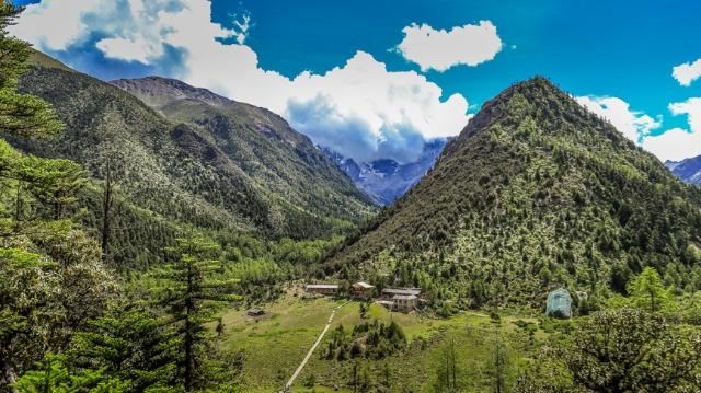 图四 云南白马雪山国家级自然保护区原始森(11445895)-20210915164813.jpg