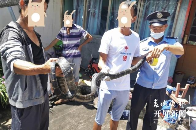 米半长眼镜王蛇绕在房梁上吓坏居民 民警出手了.jpg