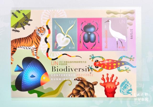 _生物多样性公约_第十五次缔约方大会》纪念邮票首发式 (1).jpg