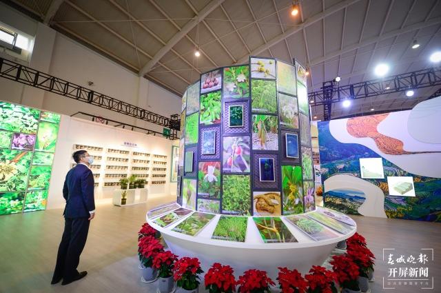 探秘COP15大会唯一的线下展(龙宇丹 摄)