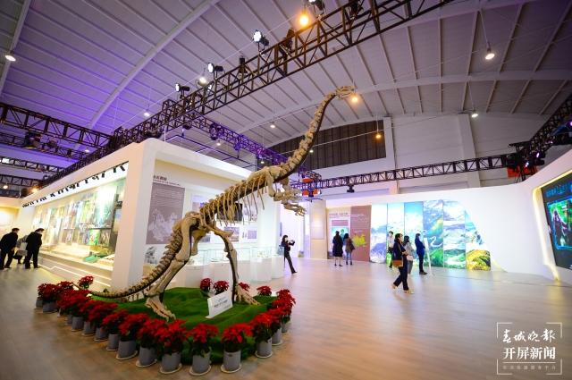 禄丰恐龙化石(11721905)-20211013185526.jpg
