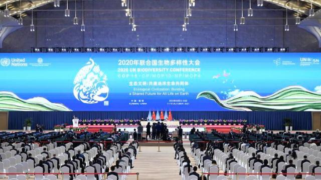 2020年联合国生物多样性大会(第一阶段)闭幕